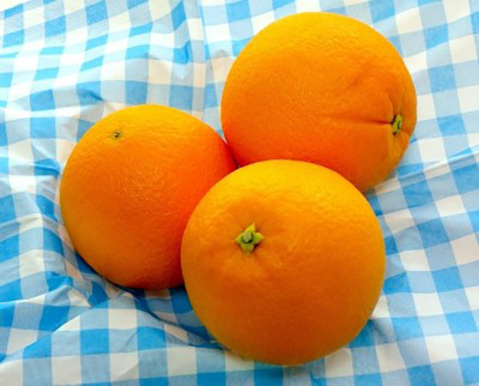 quick and easy healthy recipes oranges